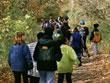 walking_in_woods